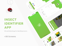 Insect Identifier App || UX/UI