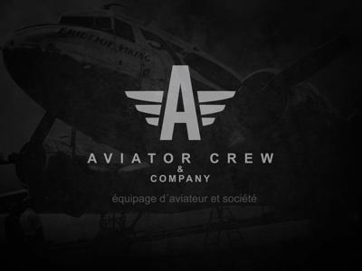 Aviator Crew branding graphic design wings crew aviator identity brand logo