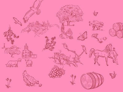 Nature hand drawn animals pink wacom nature book drawing doodle