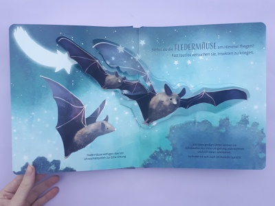 Bats pop up book kidlitart night cute animal bats childrens illustration childrens books illustration