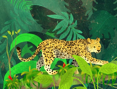 Leopard cute animal cute leopard nature illustration
