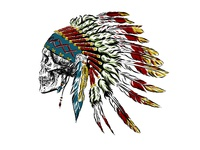 Skull in indian feathers.
