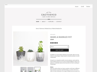Cactus & Co Web Design & Art Direction