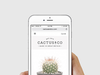 Cactus & Co Responsive Web Design
