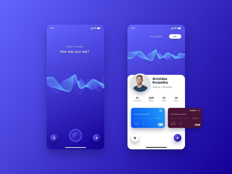 """illi"" Voice assistant 