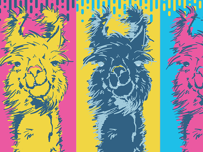 Save the Drama for your Llama cute llama animals vivid color theory vector pop art