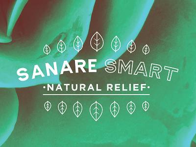 Sanare Smart mark minimal leaf nature logo