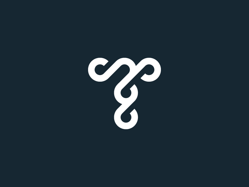 T type vector typography logotype letter icon logo mark symbol monogram identity