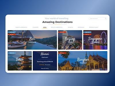 Travel agency web design webdesign web travellers traveller travelling travel