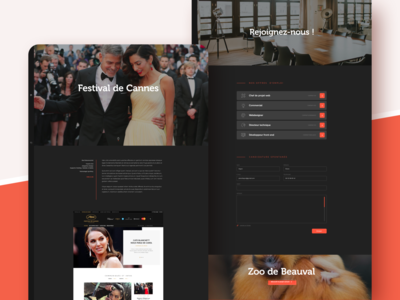 Agency Portfolio - Project & Career pages