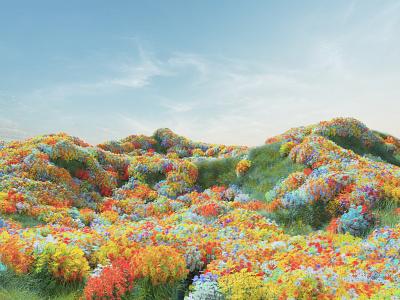 Portal Spaces / Flower Field redshift3d field flower 3d