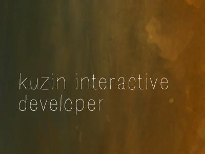 Identity Concept logo branding concept interactive developer