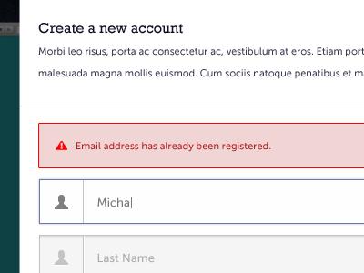Signup Form signup form ui test error message input