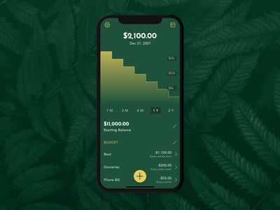 Mockup for a Personal Finance App - Oolong budgeting budget fintech finance ux design product design uxui