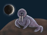 Total Walrus Eclipse