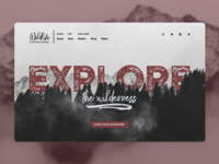 Adventure Website Concept