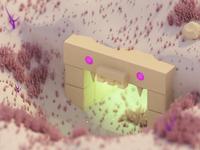 Dungeon in desert