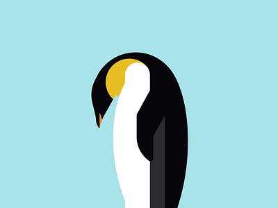 Penguin Illustration animal kingdom animals penguin illustration geometric