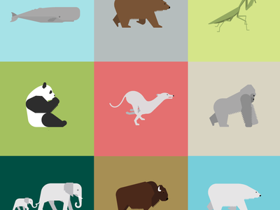 The 100 Day Project: Animalia Daily animal animals illustration geometry design minimal minimalism grid animal kingdom wildlife nature