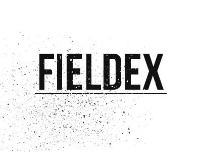 Fieldex 02