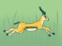 Brave the gazelle-lements