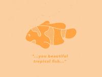 """""""You Beautiful Tropical Fish..."""""""