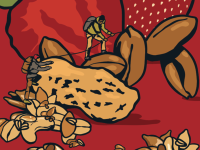 Granola food athlete outdoors pbj strawberry peanuts granola illustration packaging