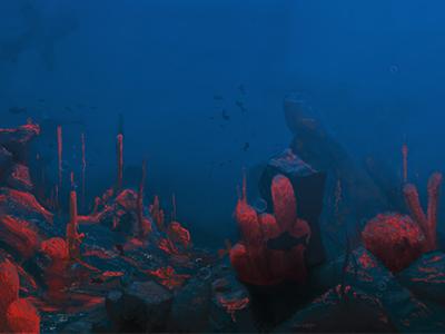 Seabed illustration seabed illustration bear