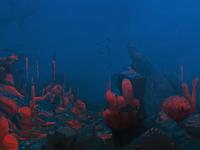 Seabed illustration