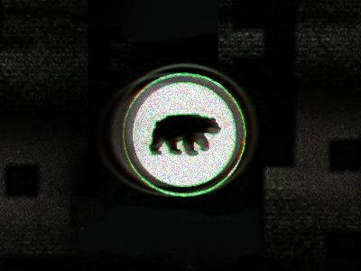 Distobear bear logo distortion