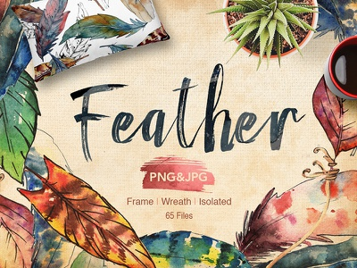 Feather bird PNG watercolor set illustration art download set bird feather png watercolor