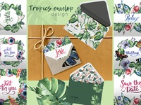 Watercolor PNG tropical set