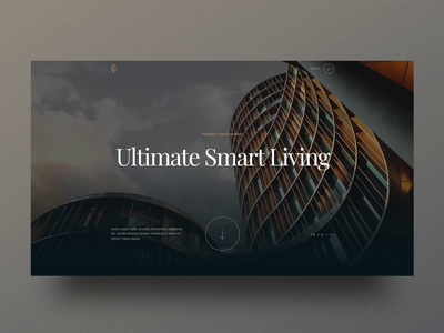 onepager1-dribbble.mp4