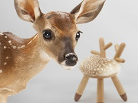 A Different Habitat - Bambi Chair