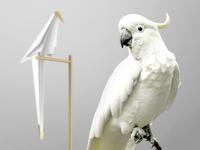 A Different Habitat - Perch light