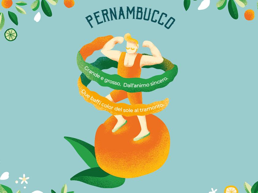 Cartoline fb pernambucco