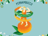 Citrus festival - Pernambucco