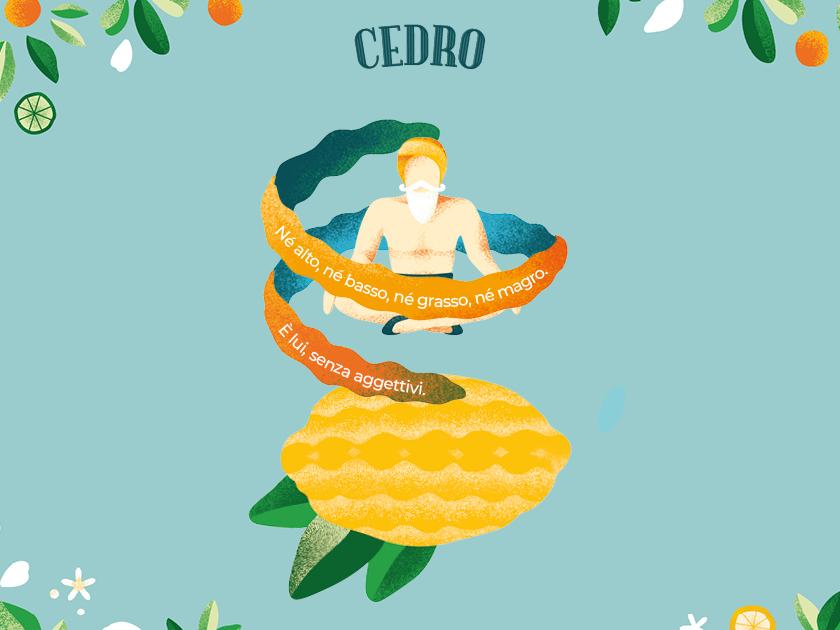 Citrus festival - Cedro citrus circus festival lemon nature pattern event graphicdesign vector green graphics illustration character