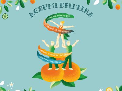 Citrus festival - Agrumi