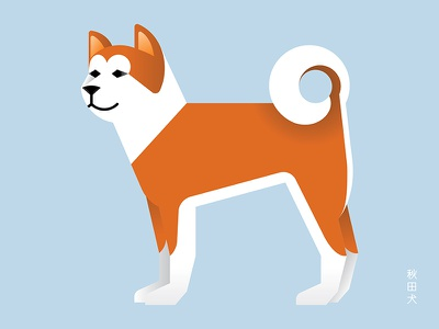 Akita illustration geometry minimal vector hatchi pet animal dog