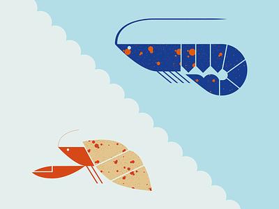 Decapod crustacean crustacean hermit crab lobster langouste pictogram seafood food animal illustration vector