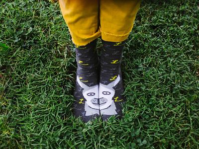 Lessonly Ollie Llama Socks apparel design apparel swag brand design brand branded collateral socks