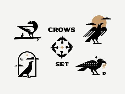 CROWS illustration logo inspiration design branding vector bird crow raven