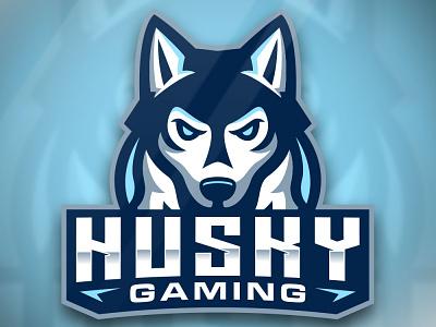 Husky mascot logo streamer youtube twitch sport esport gaming cartoon logo character mascot pet animal dog husky