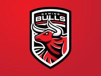 Bulls Gaming