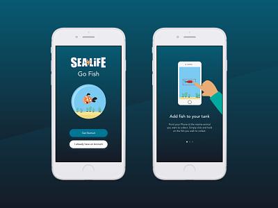 Go Fish - Aquarium Experience Research interactive aquarium fish research app ux ui illustration design