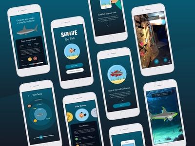 Go Fish - Aquarium Experience Research