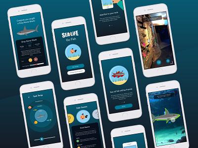 Go Fish - Aquarium Experience Research research interactive fish aquarium app ux ui illustration design