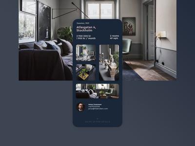 Real Estate Agency Website Concept