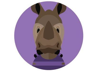 Zoo animals, Zebra, Rhinoceros,Hippo,Raccoon